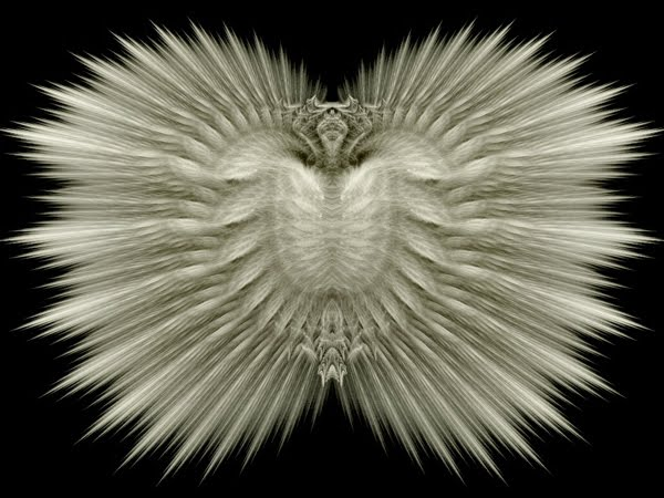 White Feather Shield black and white Wallpaper