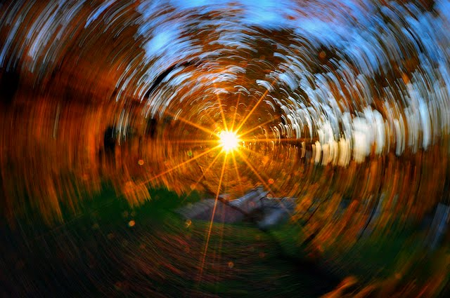 Dizzy fall by Nick Scribner