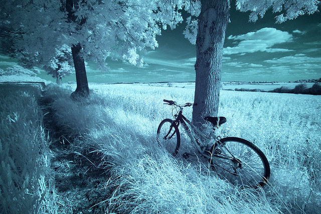 9 Digital Infrared Photography 25 Great IR Shots