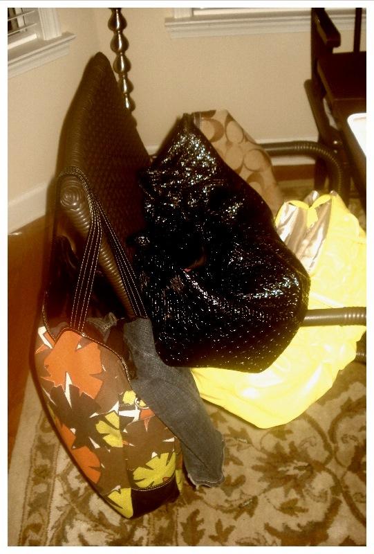 Slip Bag Shoes