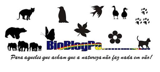 BioBlogPE