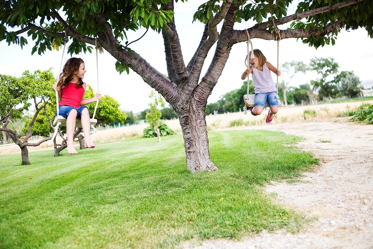 Good Fruit Trees For Backyard : Maya and her best friend swinging on a dwarf tree, other dwarf trees
