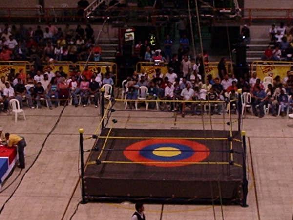 Espectacular pelea de lucha libre