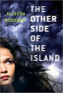 Book Cover Art for The Other Side of the Island by Allegra Goodman