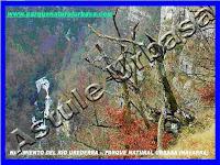 Presa del nacedero del Río Urederra. Reserva Natural del Nacedero del Río Urederra. Parque Natural de Urbasa Andía y Lókiz. Centro de Turismo Rural y Agroturismo Casa Rural Navarra Urbasa Urederra.
