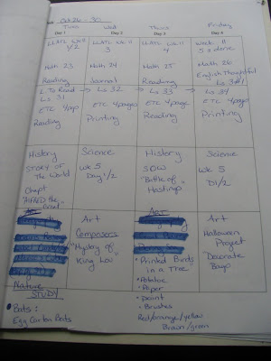 lesson plan book. lesson plan template and