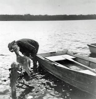 Fawn in Lake