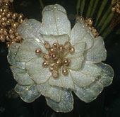 Bunga-bungaan Dip Qiasatina Flowers