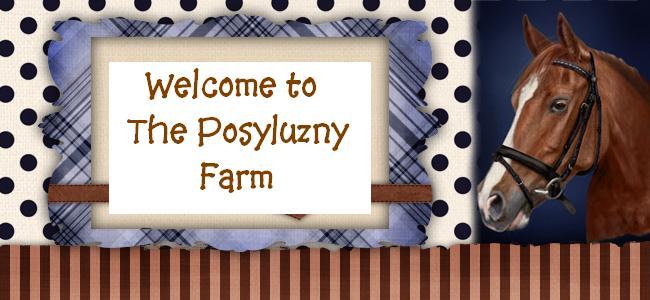 Posyluzny Farm