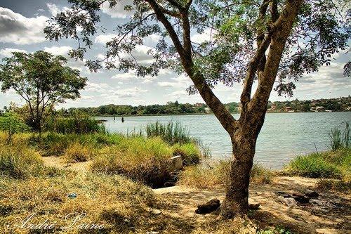 A Lagoa da Prata * Parque Ecológico