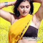 Namitha Masala Pictures