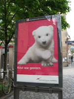 Poster of polar bear Flocke in Nuremberg Germany