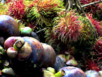 Mangosteens at Granville Island Market in Vancouver
