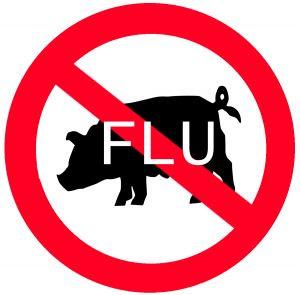 Swine Flu Insurance