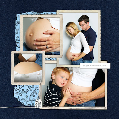 Pregnancy Diary on New Baby Grant Pregnancy Journal