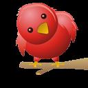 kuşum uçuyo(twitter)