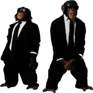 speaking monkey business monkey wearing sunglasses driving a car