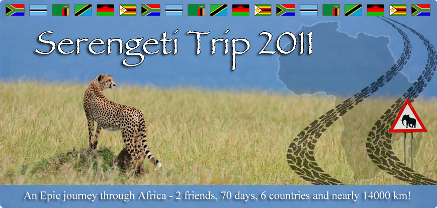 Serengeti Trip 2011