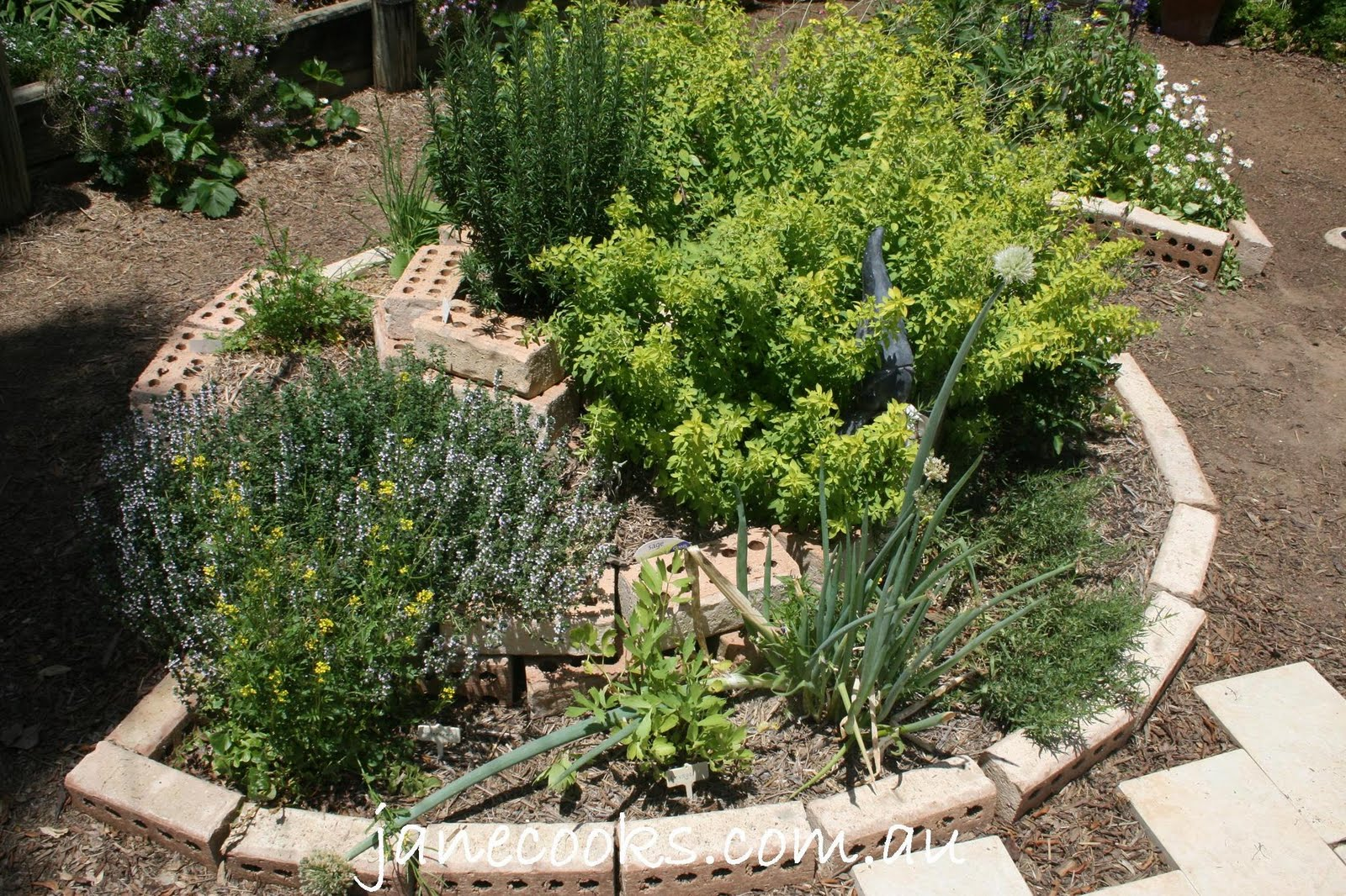 Spiral herb garden design photograph garden blueprints he for Herb garden design