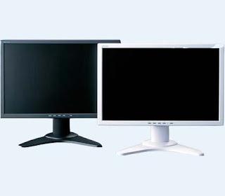 Buffalo 20inch LCD