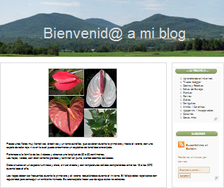 Colocar cualquier tipo de imagen como cabecera del blog en blogger