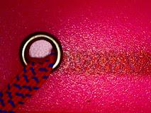Existen 50 tonos de rosa…. ¿Cuántos rosas conoces?