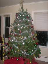 Our Christmas Tree 2008