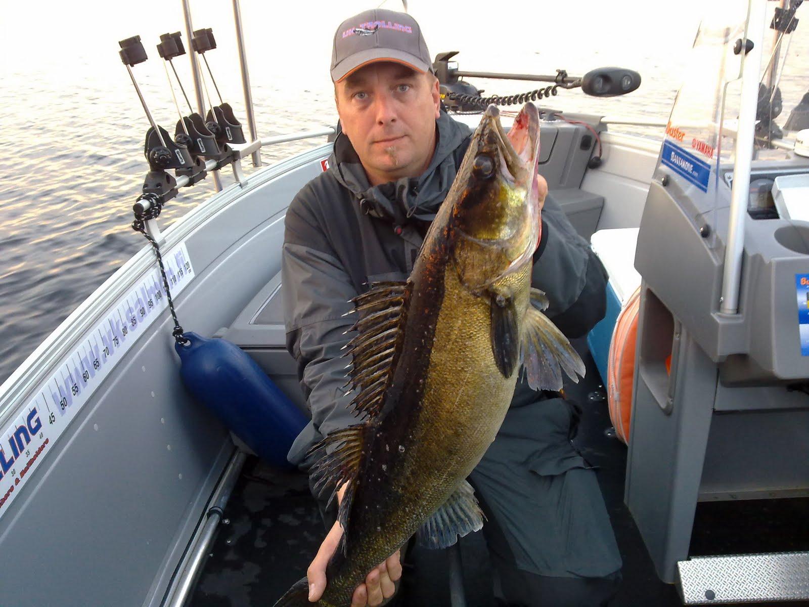 Lake Saimaa fishing travels: More Pike perch