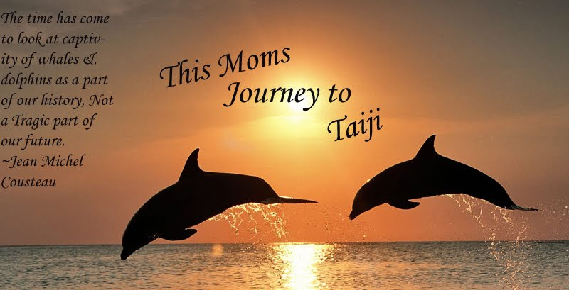 This Moms Journey to Taiji