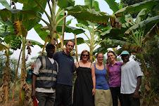 The Farm - Kindia, Guinea