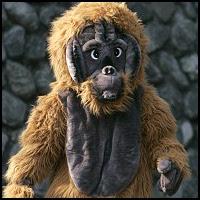 Japanese Orangutan Costume
