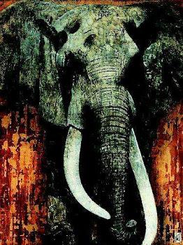 Have u seen elephants, kings or Peru??