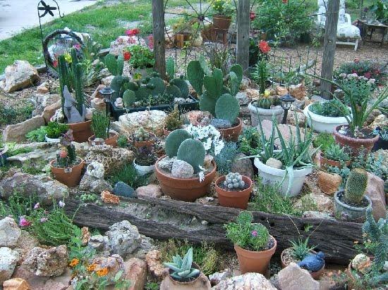 Restaura o de m veis de poca minhas plantinhas - Considerations small rock garden ...
