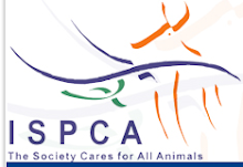 The Irish Society for the Prevention of Cruelty to Animals