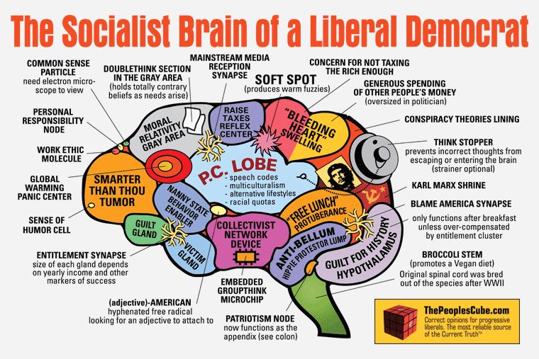 http://4.bp.blogspot.com/_bstXBEDnG9w/TRDqSsKf06I/AAAAAAAAERY/6ChTq3tfOq8/s1600/Brain_Socialist_revised.png