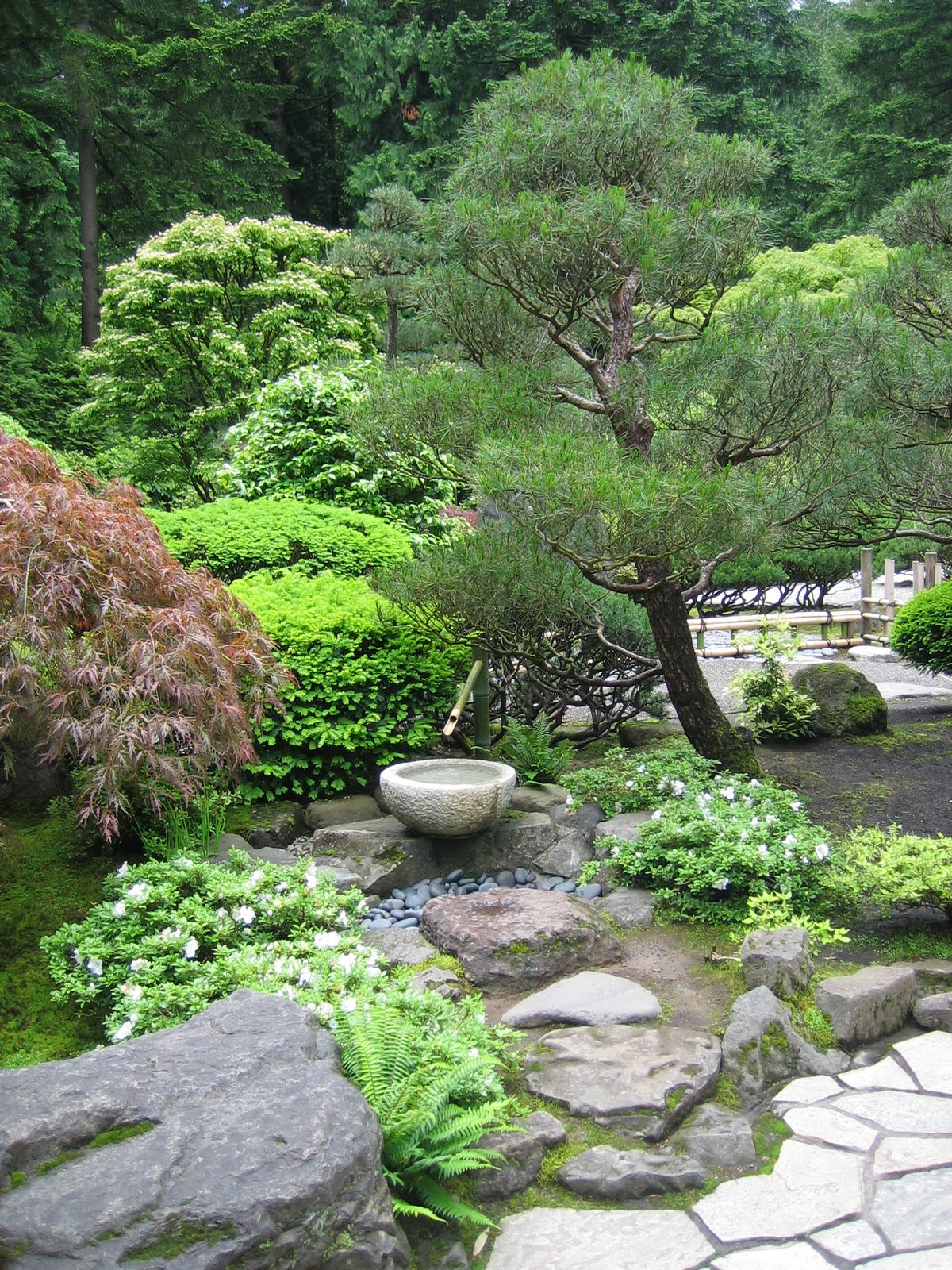 Journeys and jonquils summer travels 2010 part 4 the for Best plants for japanese garden