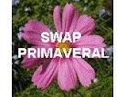 SWAPP PRIMAVERAL