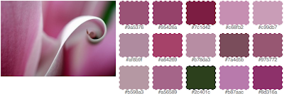 Screenshot of fd's flickr toys palette generator output