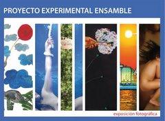 Proyecto Experimental Ensemble