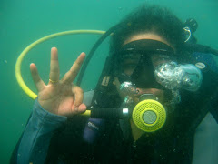 Dive @ Bali (2009)