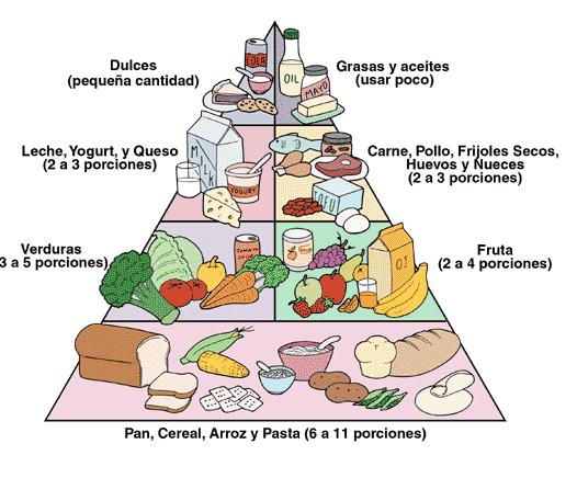 La piràmide alimenticia