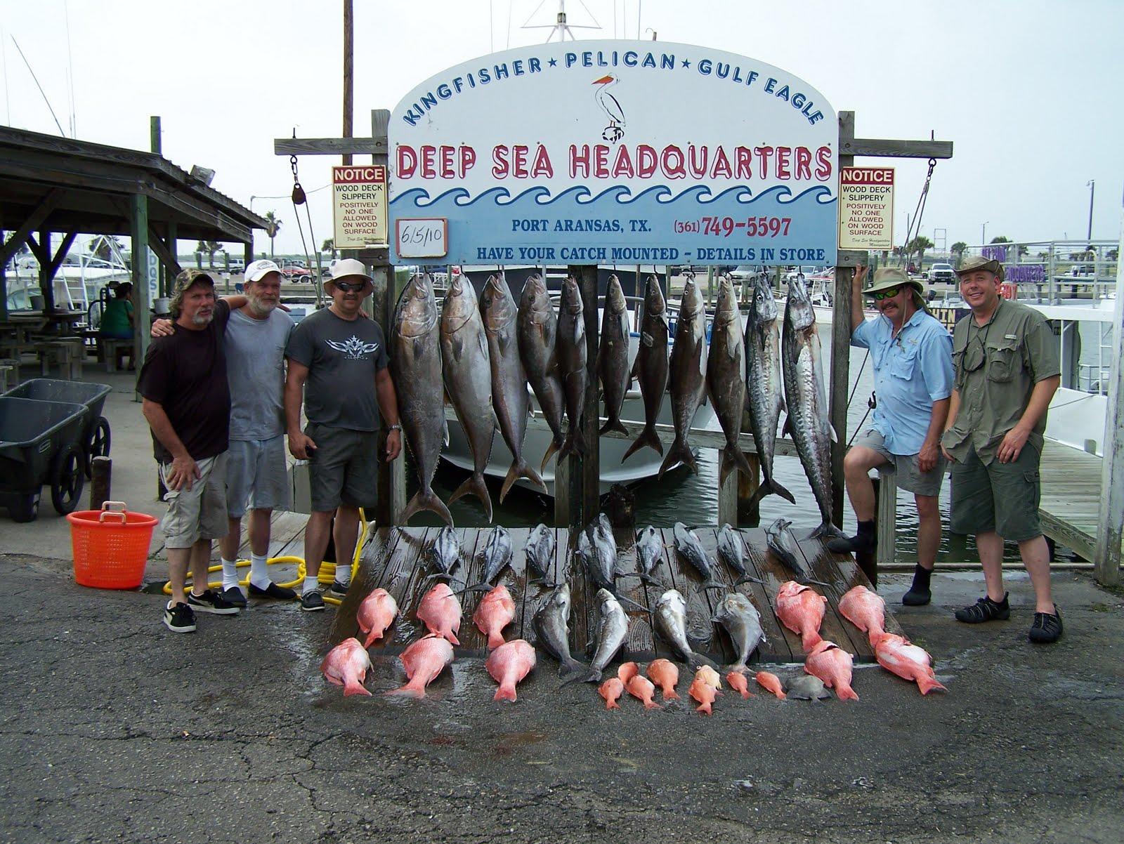 Fishing accurate reels fishing in the gulf for Port aransas deep sea fishing