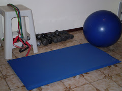 PELOTA DE REHABILITACION, COLCHONETA, MANCUERNAS, BANDAS ELASTICAS
