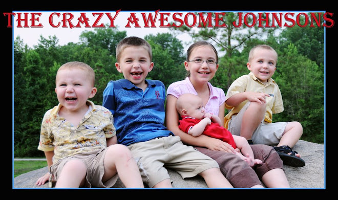 The  Crazy Awesome Johnson Family Blog