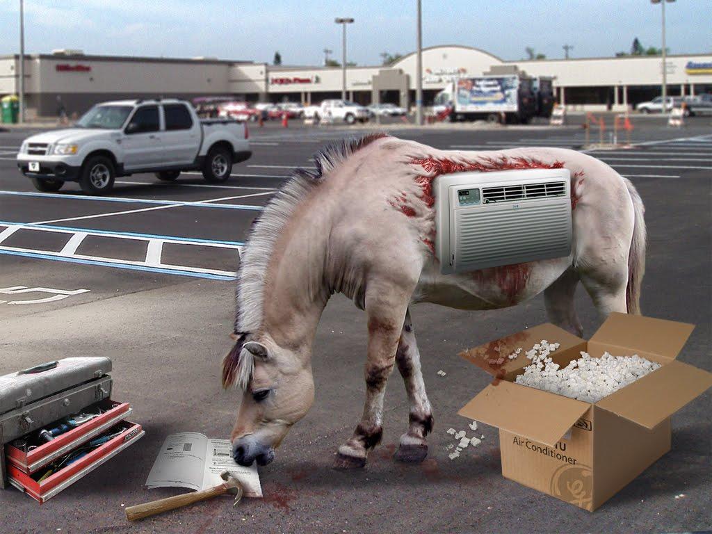 true american dog horse installs air conditioner to fight. Black Bedroom Furniture Sets. Home Design Ideas