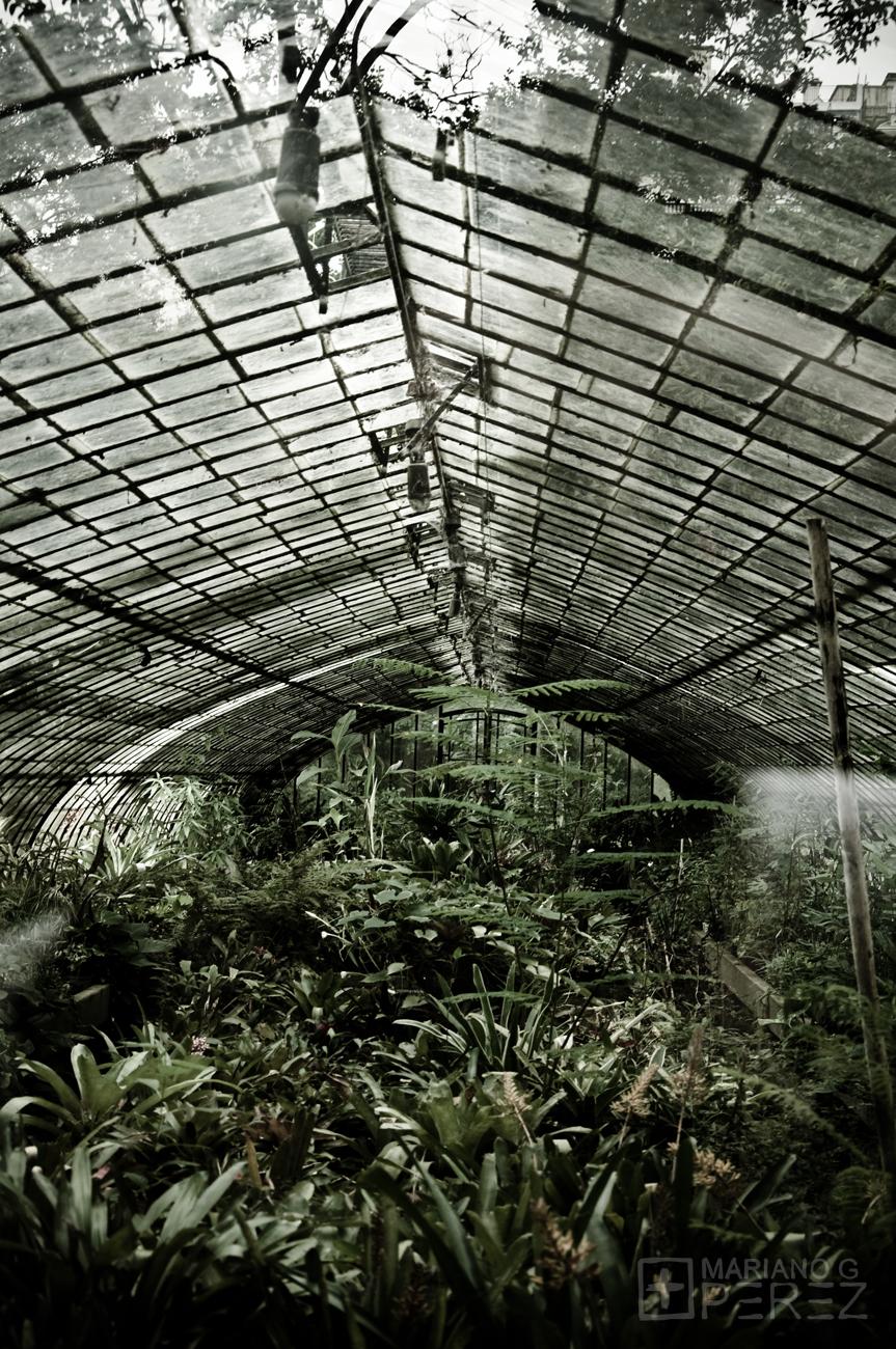 Mariano gabriel p rez fotograf as tarde gris en el for Vivero el botanico