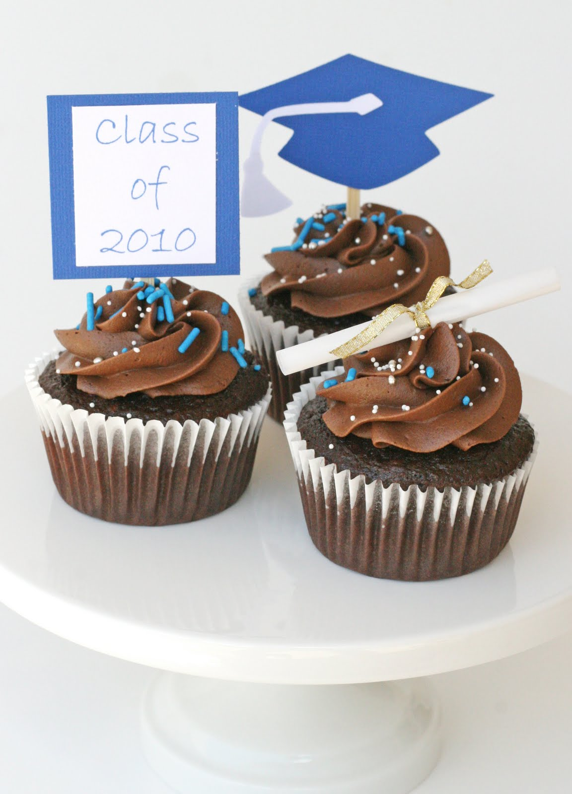 Graduation cupcakes with do it yourself toppers glorious treats below are a couple more versions of diy do it yourself toppers i made for family and friends last year for the yellow set with flowers below i solutioingenieria Gallery