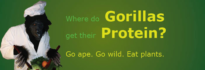 Where Do Gorillas Get Their Protein?
