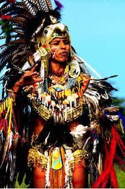 indigenas t