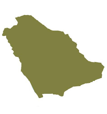 outline for saudi arabia report I need informative speech outline about my home country saudi arabia i need informative speech outline about my home country saudi based on the report.
